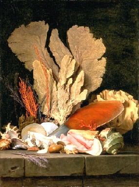 Anne Vallayer-Coster's Still Life with Seashells and Coral (Musée du Louvre, 1769)
