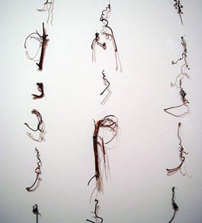 Cui Fei's Manuscript of Nature V (Cheryl McGinnis gallery, 2007)