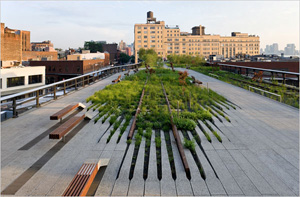 The High Line (photo by Iwan Baan, Friends of the High Line, 2009)