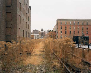 Joel Sternfeld's The High Line, Looking North from 26th Street (Pace McGill, 2000)