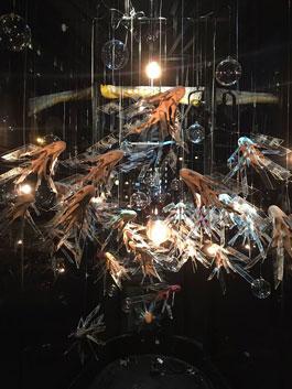Garret Kane's Mimicri (Prow Art Space/Cheryl McGinnis, 2016)