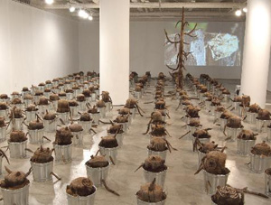 Babs Reingold's The Last Tree (ISE Cultural Foundation, 2010–2013)