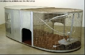 Andreas Slominski's Dog Trap (Metro Pictures, 1999)